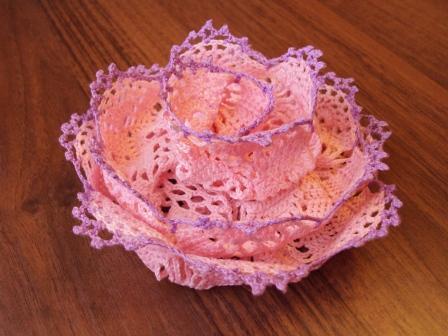 Deliziosa rosa con schema