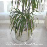 Come rinnovare un vaso porta piante in un ambiente Shabby